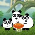 3 الباندا في الخيال