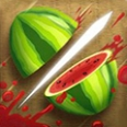 الفاكهة النينجا